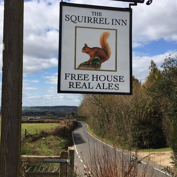 Pub - The Squirrel Inn